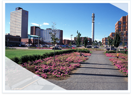 Picture of Moncton's downtown park
